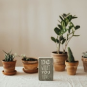plants with motivating sign