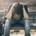 Man stressed on park bench